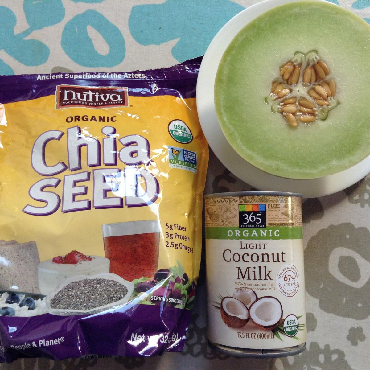 honeydew coconut chia pudding recipe