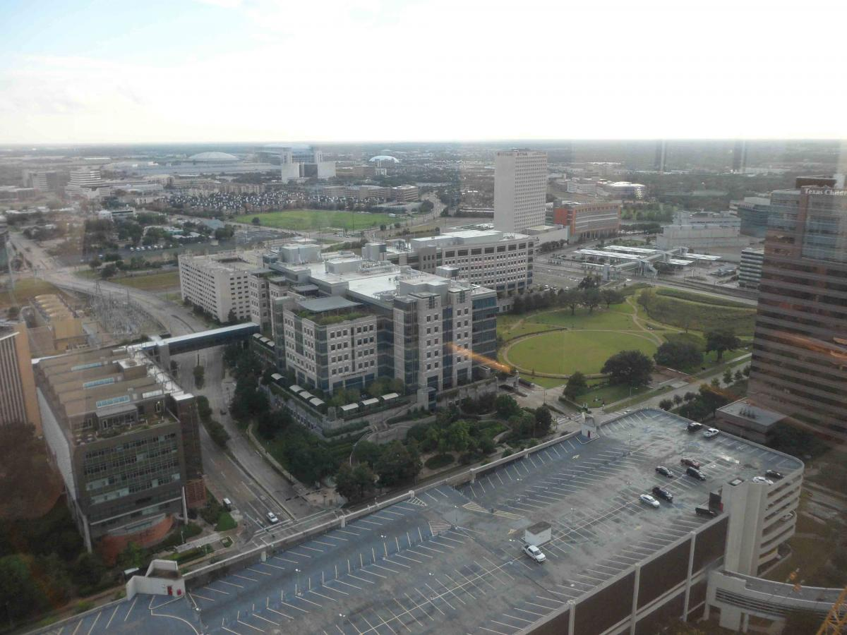 MD Anderson Observation Deck