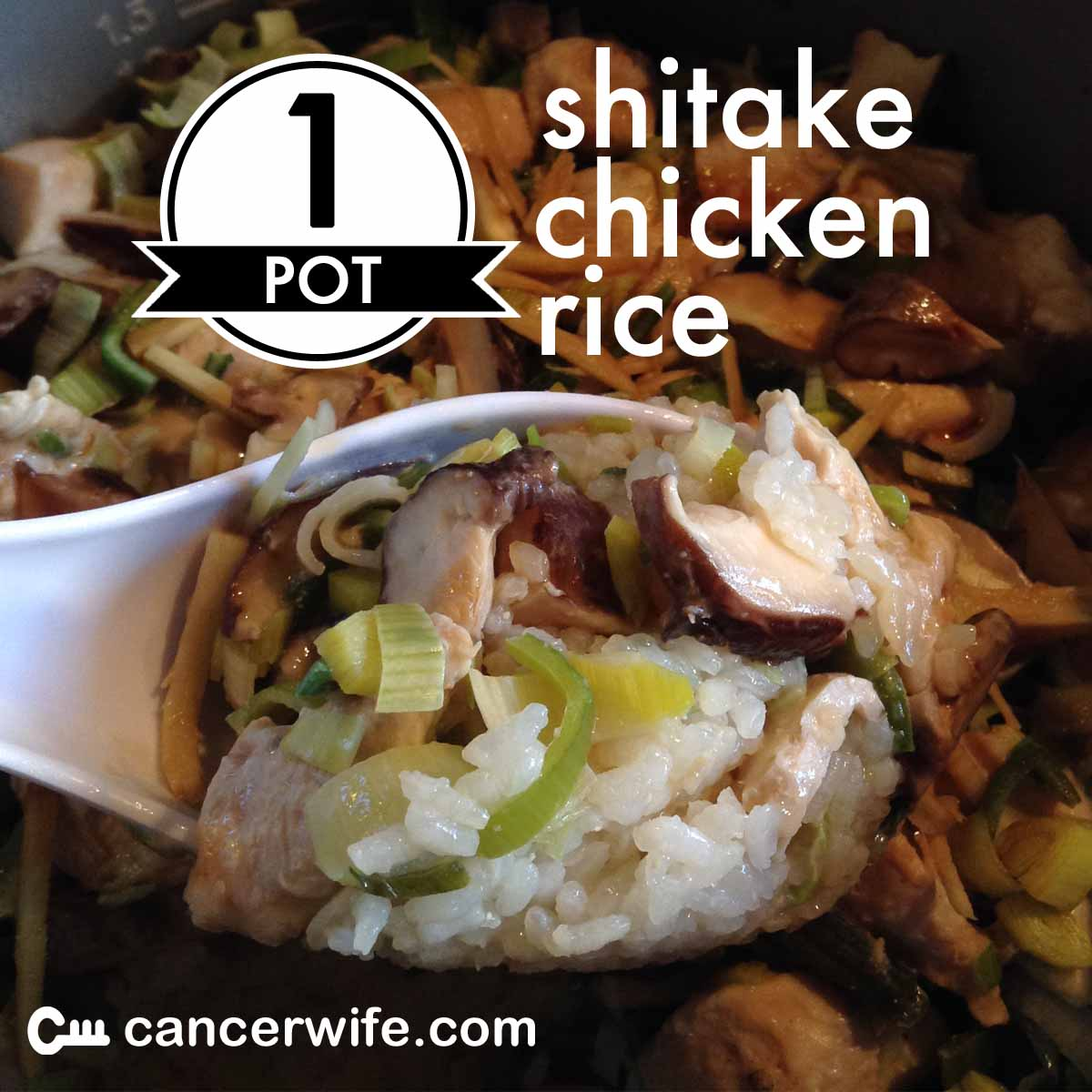 One Pot Shitake Chicken Rice Recipe